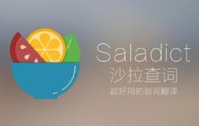 沙拉查词,聚合多个翻译软件,支持划词操作