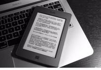 假装水墨屏油猴脚本,一键切换浏览器黑白阅读模式