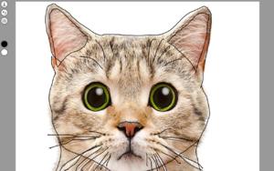 Carla Draw插件,网页图片编辑,画笔涂鸦工具