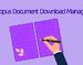Scopus文档下载管理Chrome插件,直接从Scopus下载PDF文件