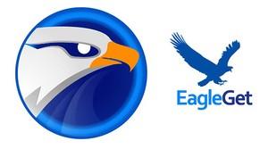 EagleGet插件,下载加速/资源嗅探,可下载网站视频