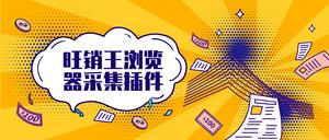 旺销王浏览器采集插件,店铺商品信息采集,跨境电商卖家助手