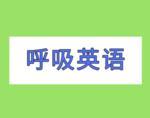 呼吸英语插件,将中文替换英文的单词学习工具