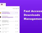 Infinity新标签页团队产品:下载管理Pro版