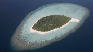 除了卖直升机和跑车,这个超级富豪网站还将在私人小岛举办真人大逃杀