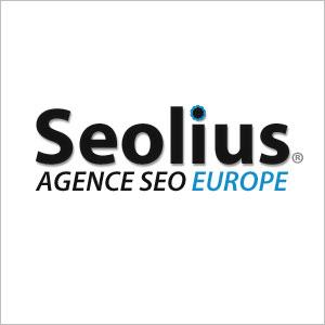 Le Direct Seolius et des experts e-marketing - LOGO