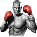 Unlimited Boxing Game - LOGO